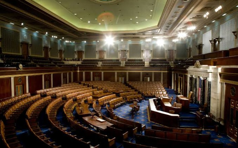 THE IMPACT OF EFFECTIVE REPRESENTATION IN FEDERAL CONSTITUENCIES